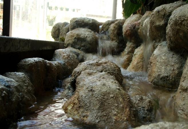 Botanic Garden 's greenhouses Muséum d'Histoires  Naturelles